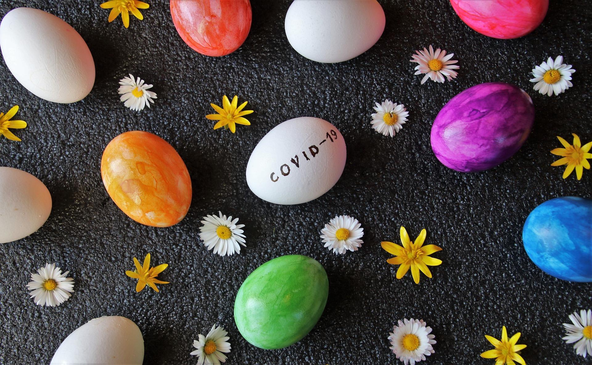eggs-4991809_1920.jpg