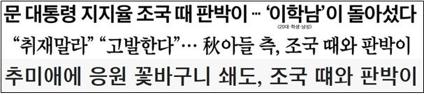 추미애보고서_조국 판박이 제목.png